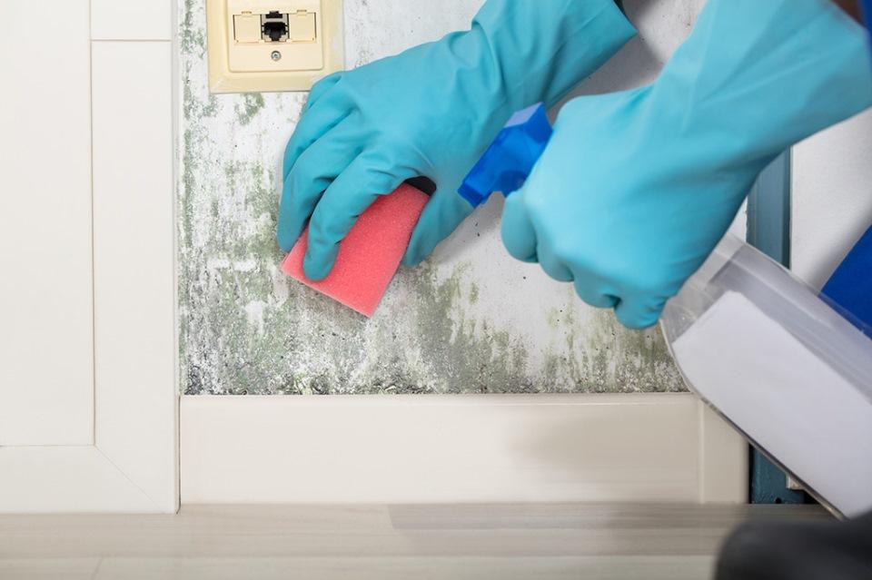 Πώς να εξαφανίσετε τη μούχλα από κάθε επιφάνεια του σπιτιού σας